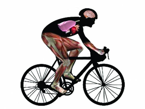 1-ciclismo