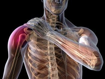 lesão-muscular1